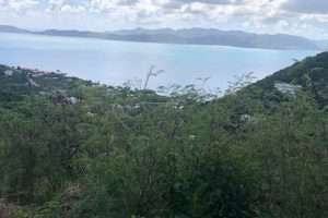 land in Romney park tortola British Virgin Islands remax best priced properties