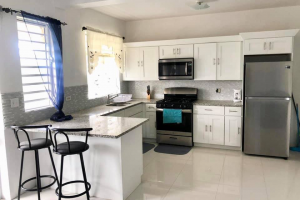 kitchen one bedroom in Greenland RE/MAX Best Priced Properties Tortola British Virgin Islands
